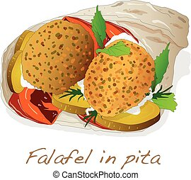 Falafel in pita vector isolated
