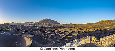 volcanic landscape with vinery at La Geria in Lanzarote