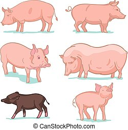 Realistic colored sketch vector illustration of farm pigs