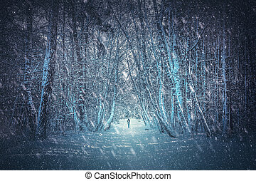 Walking alone in winter forest. One person with backpack...