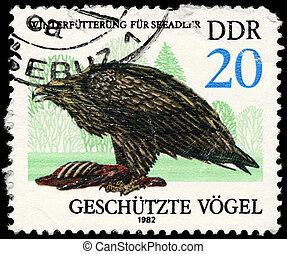 GDR - CIRCA 1982 Sea eagle - GDR - CIRCA 1982: A Stamp shows...