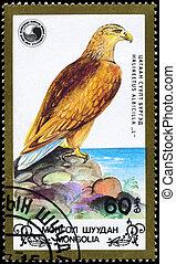 MONGOLIA - CIRCA 1988 Eagle facing right - MONGOLIA - CIRCA...