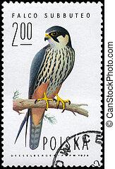 POLAND - CIRCA 1974 Falcon - POLAND - CIRCA 1974: A Stamp...
