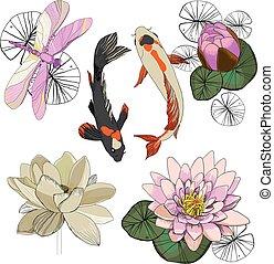 Colorful Drawing Lotus Set