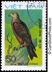 VIETNAM - CIRCA 1982 Black Kite - VIETNAM - CIRCA 1982: A...