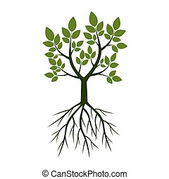 Green Trees with Roots. Vector Illustration.