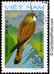 VIETNAM - CIRCA 1982 Kestrel - VIETNAM - CIRCA 1982: A Stamp...