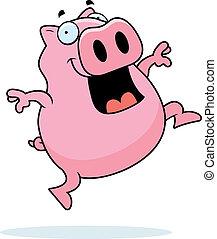 Pig Jumping