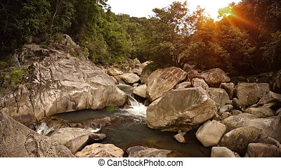 Natural Mountain Stream Flowing through Wild Forest, with...