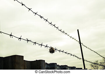 Barbed wire in the protected area