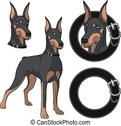 Set of Doberman colored illustrations in a collar. Isolated...