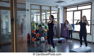 Trainer do exercises with bar with her group of women in...