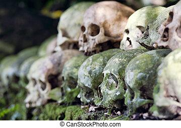 banyan, apilado, árbol, debajo, cementerio, por, Bali,...