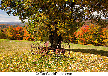 Old farm rake in Vermont - Fall leaves add color to a bright...