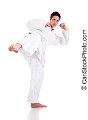 kick ok martial art, isolated on a white background: -...