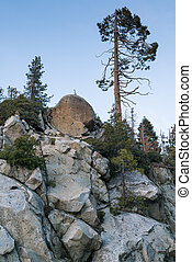 Massive stones with fir trees growing on them in national park
