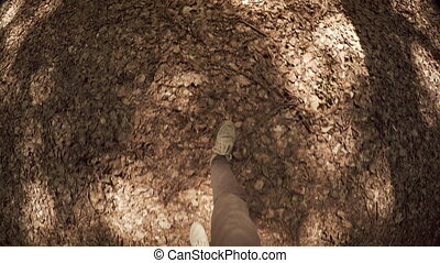 Feet of a Hiker Crunching through Dry Leaves, with Sound....