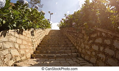 Ascending Stone Steps of a Tropical Seaside Garden -...