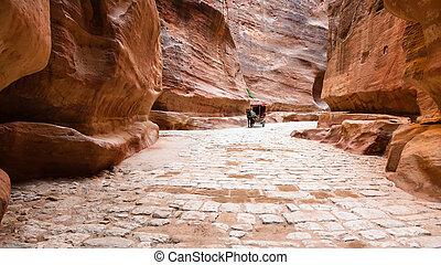 stone paved Al Siq passage to ancient Petra city