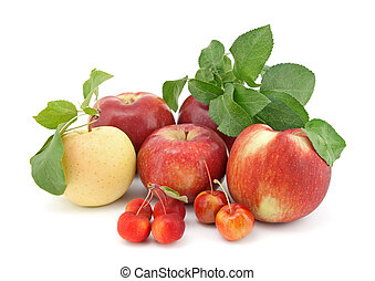 Variety of apples on white background - Variety of ripe...