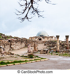 view of ancient Umayyad Palace at Amman Citadel - Travel to...