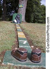 Mountain gorilla proximity guide - Bwindi Impenetrable...