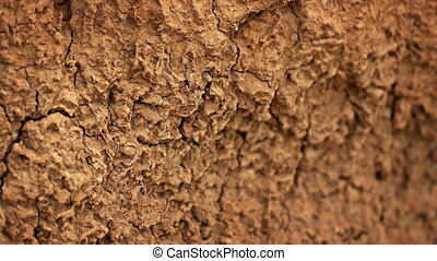 Cracked Surface of Parched Soil. - Soil surface, parched and...