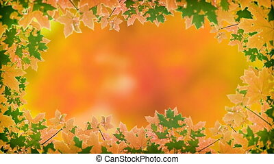 Abstract, Animated Frame of Autumn Maple Leaves.