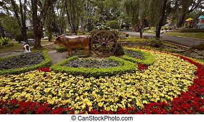 Sculpture of a Pair of Yoked Oxen, Pulling a Cart. Video...