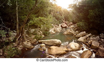 Peaceful, Babbling Brook in an Unspoiled Wilderness, with...