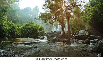 River Flows around Boulders and Trees after a Waterfall,...