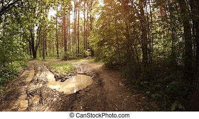 Deep Mud Hole in a Rutted Wilderness Track - Deep mud hole...