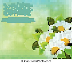 Spring background with daisy flowers