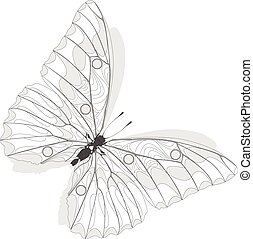 Hand drawn butterfly zentangle style