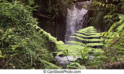 Natural Waterfall Flows into Tropical Mountain Pool -...