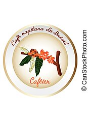 Coffee plant illustration - Isolated French coffee plant...