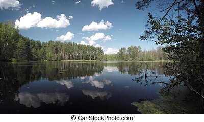 Glassy Surface of a Forest Lake under a Blue Sky -...