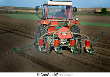 Tractor sowing corn seeds in spring - Tractor with seeder...