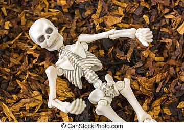 Skeleton dead body bones resting on classic blended aromatic...