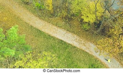 Young athlete running outside in autumn forest. Aerial view....