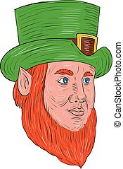 Leprechaun Head Three Quarter View Drawing - Drawing sketch...