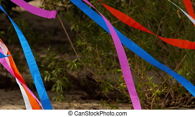 colored ribbons tied to a tree, swaying in the wind