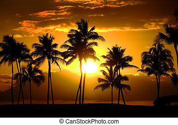 Tropical Palm Trees Silhouette Sunset or Sunrise - Tropical...