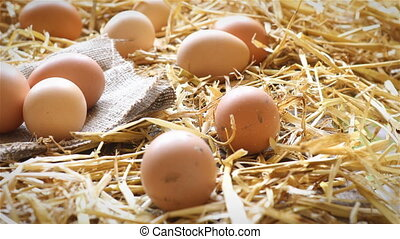 Organic eggs on rustic wood and straw - Dolly shot of hens...