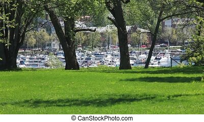 yacht marina, spring landscape - Green lawn in front of...