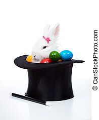 Easter bunny with eggs in a magician hat - isolated