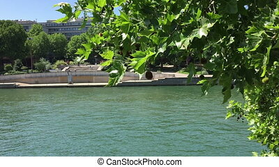 The Seine river in Paris - Shot of The Seine river in Paris