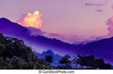 Purple morning fog in the mountains by Mica in Colombia