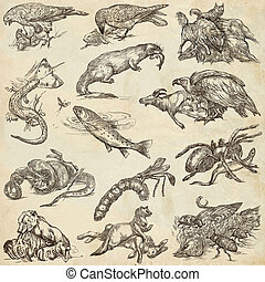 Animals in action, Predators - An hand drawn full sized...