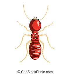 Termite insect colorful cartoon character isolated on a...